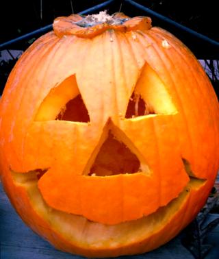 Pumpkin, whats your favorite flavor?